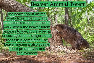 beaver animal totem.png