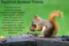 squirrel animal totem.png