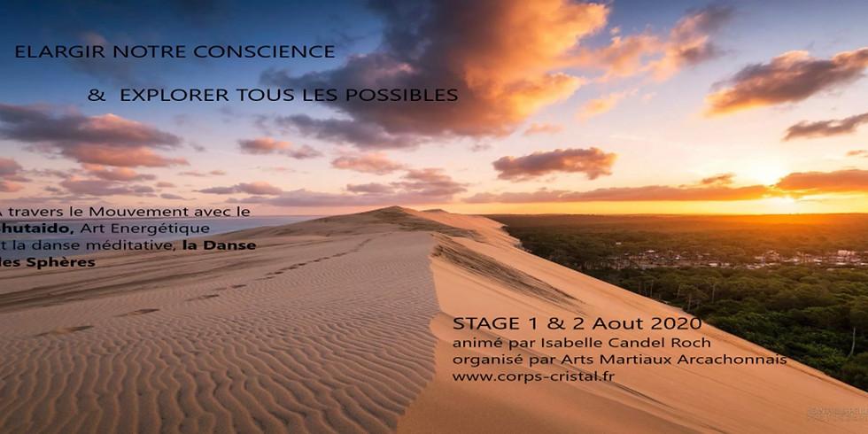 """DANSE DES SPHERES - """"Elargir notre conscience & explorer tous les possibles"""""""