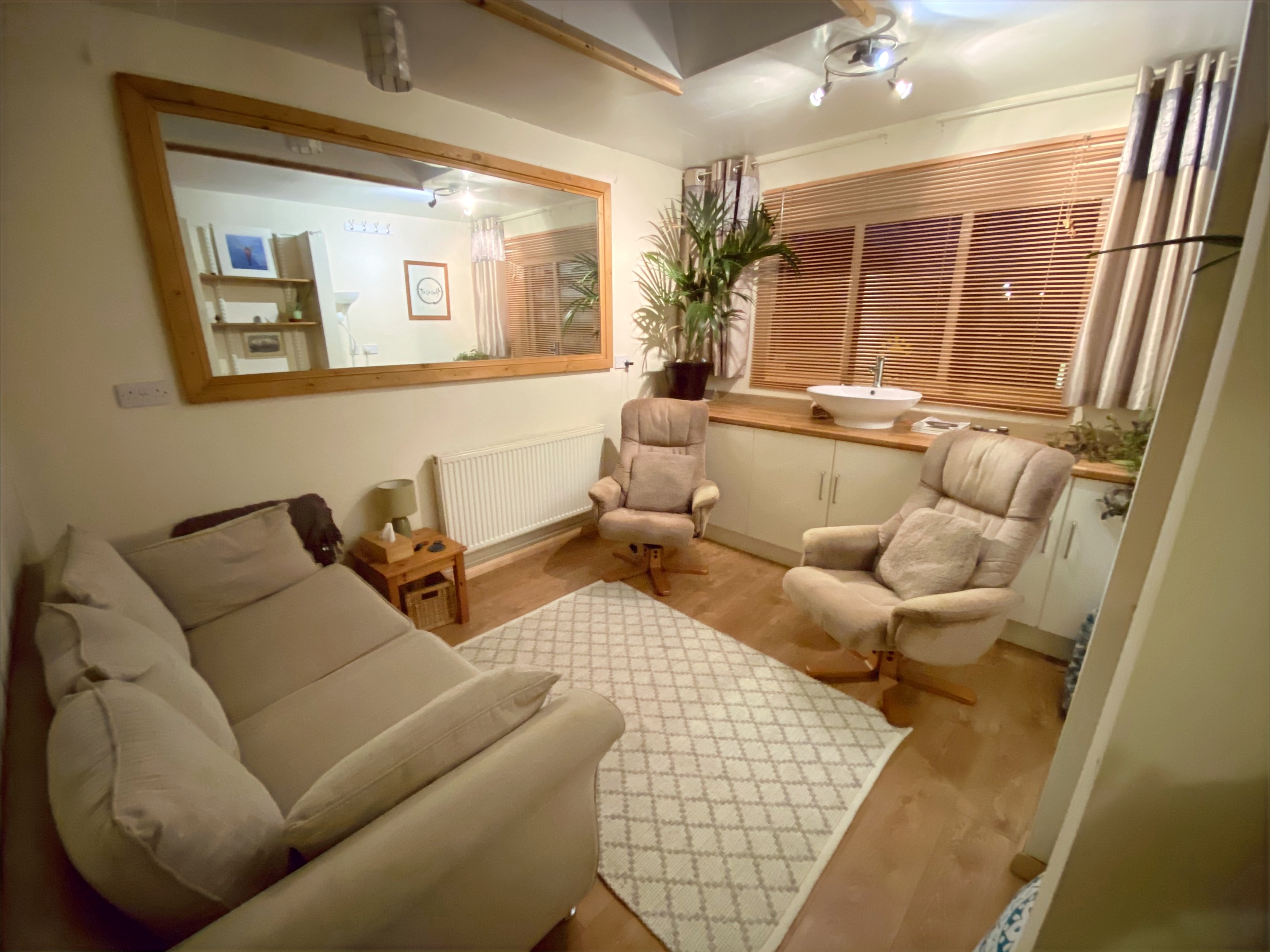 Talking or Play /therapy Room