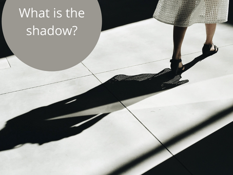 What Is The Shadow?