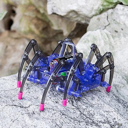 Kids STEM DIY Robot Spider Kit walking on rocks