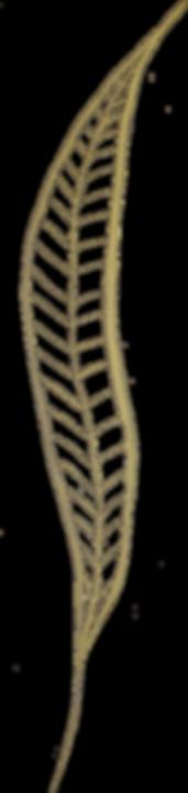 left leaf.png