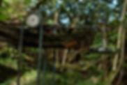 DSCF4441.jpg