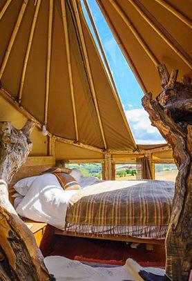 The Phoenix Tree bedroom Boteti Getaways