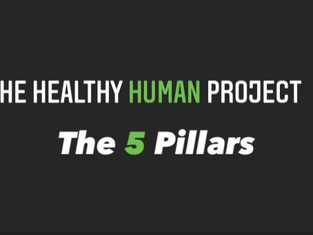 The Healthy Human Project: 5 Pillars