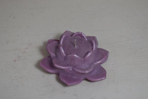 Lotus- purple/shimmer