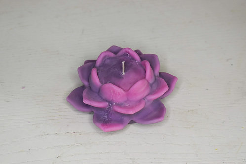 Purple & pink lotus candle