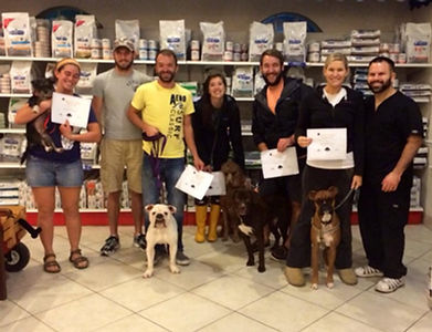 Group dog training and puppy training classes in downtown Orlando