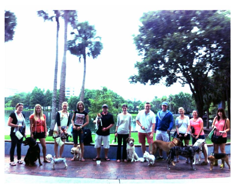 Dog classes Orlando