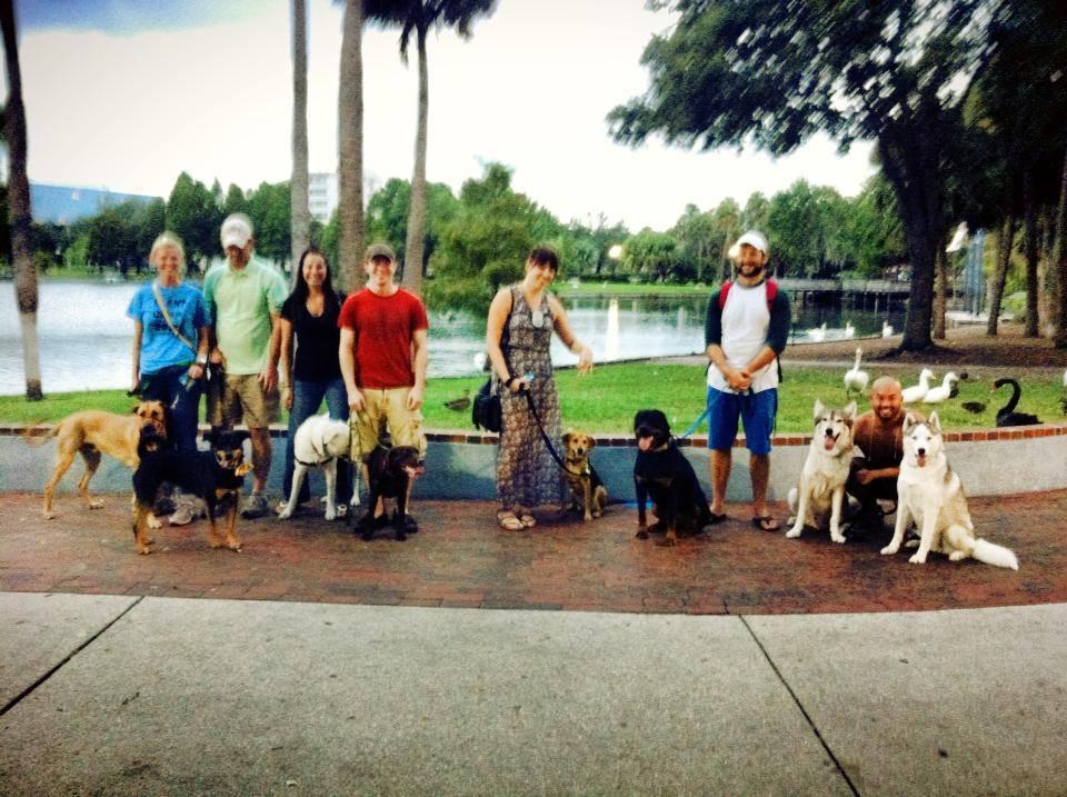 Dog Trainer in Orlando