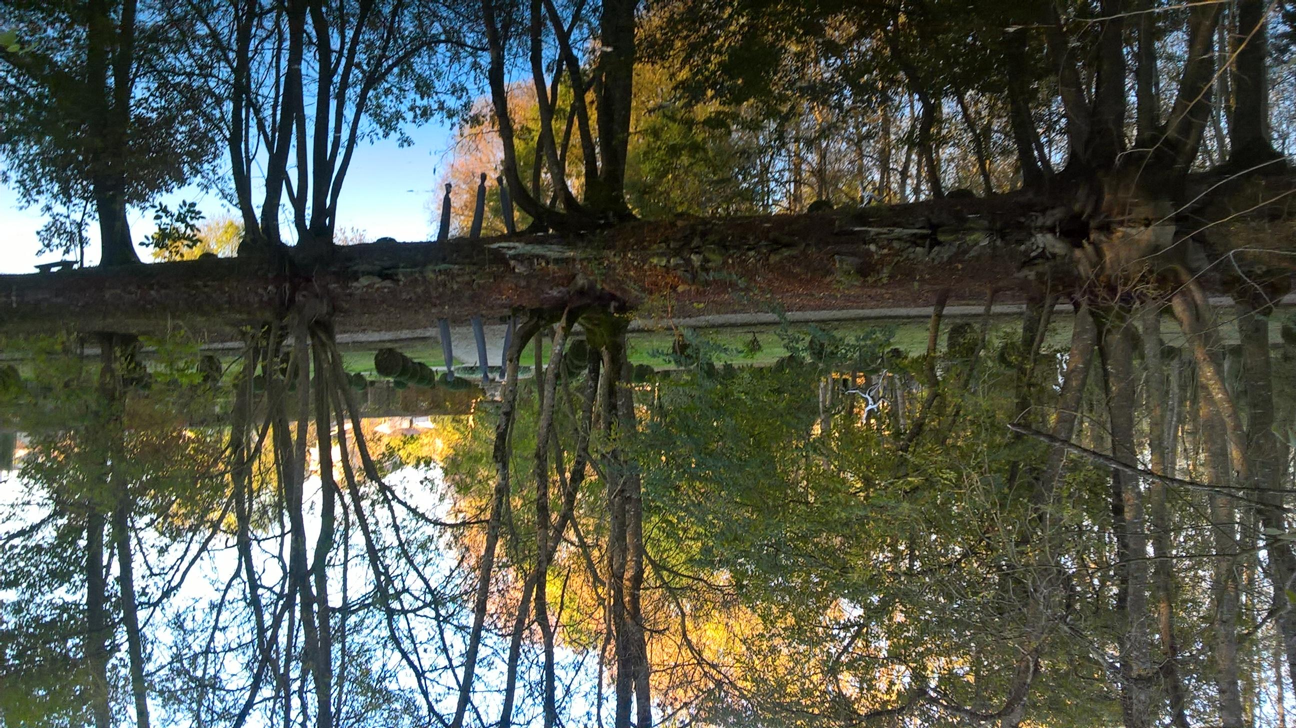 reflets sur la Boutonne