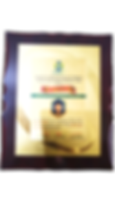 IMG_20200724_093334-removebg-preview_edi