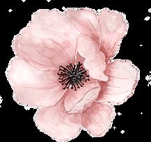kissclipart-watercolor-flowers-free-clip