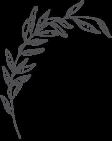botanica8.png