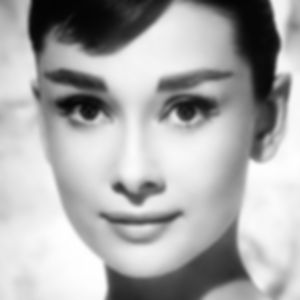 the-audrey-hepburn-eye 2.jpg