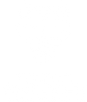 inverted HCHS Logo_Wolf_Color_A.png
