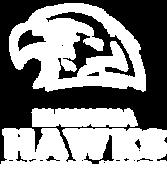 Hawk-Logo_cmyk.png