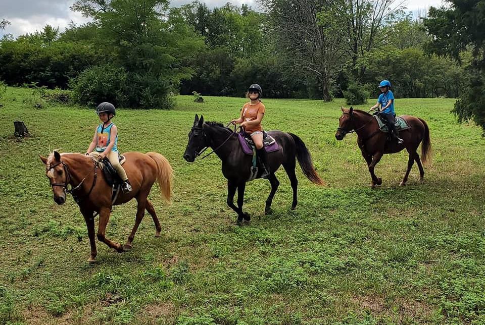 Beginner Clinic Trail Ride