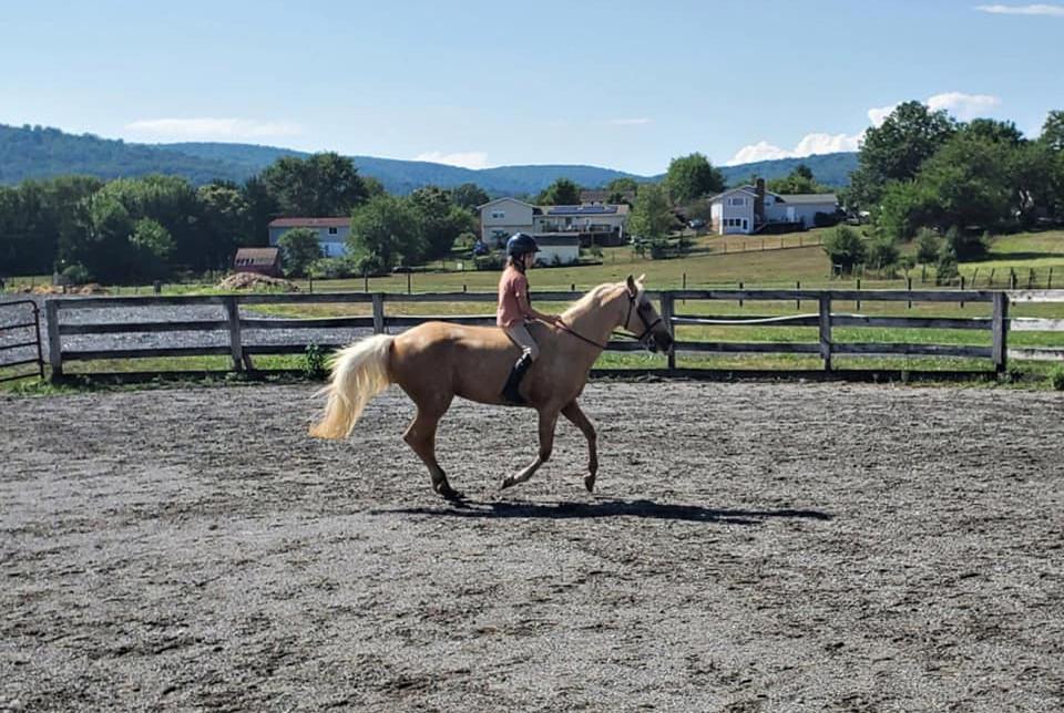 Beginner Clinic Bare Back Challenge