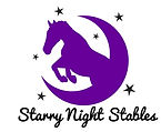 StarryNightOfficalLogo.jpg