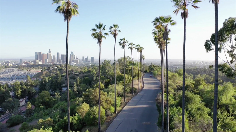 City of Angels.mov