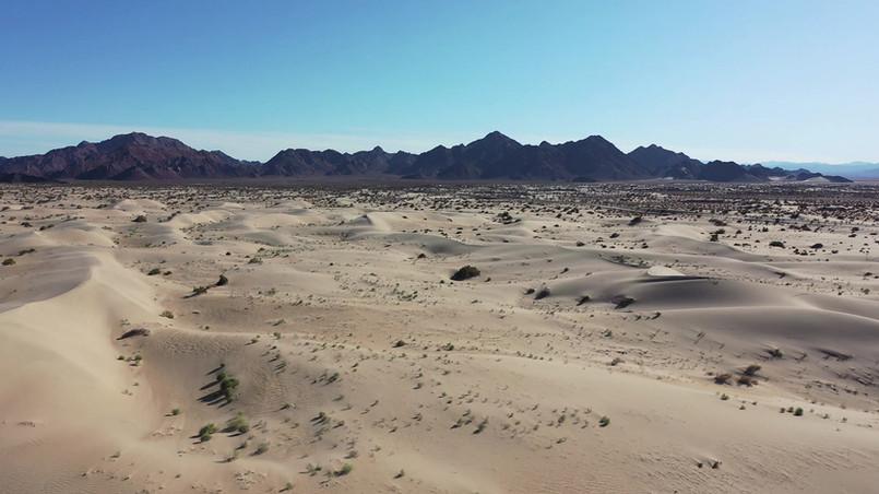 Sonoran Desert Mexico.mov