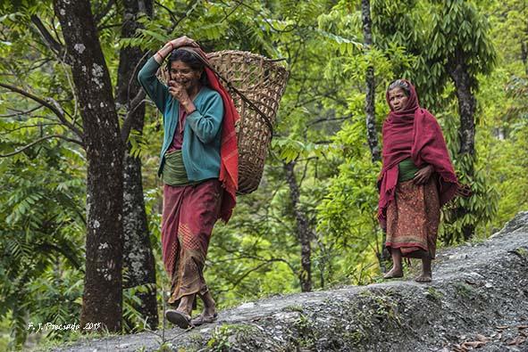 Gorepani (Nepal)