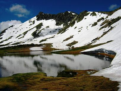 Portada Alpina.jpg