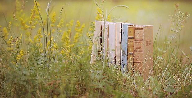 21124_libros-naturaleza_1.jpg