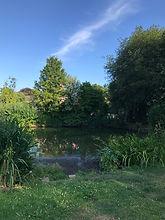 Cliddesden Pond