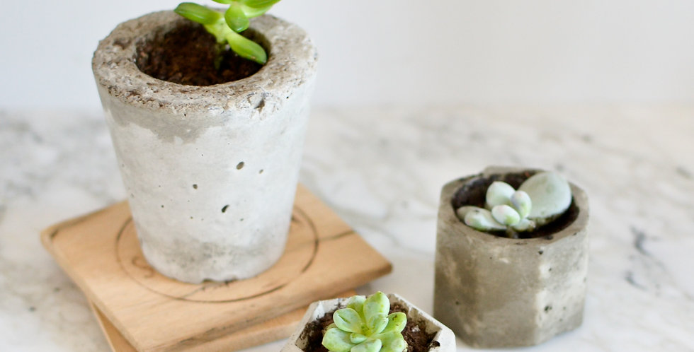 Tiny Concrete Planter