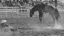 Sonoita 101st Annual Labor Day Rodeo!