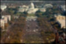Outdoor Modular LED Screens - Washington D.C. Rally
