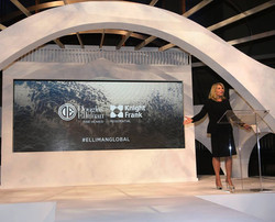 5mm Indoor LED Video Wall