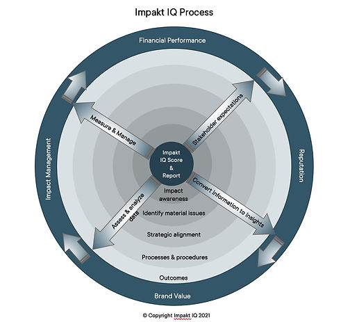 Impakt IQ Process Diagram 1 Rev 1.jpg
