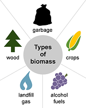 biomass-types.png