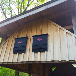 Bat Box at Buckner.jpg