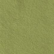 Wolvilt kleur nr: 077  Vert tendre