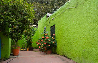green-wall=web.jpg