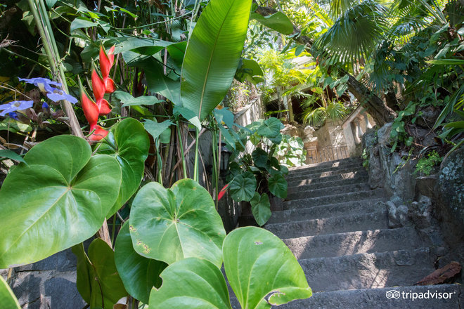 Over 40 steps to the Bungalow