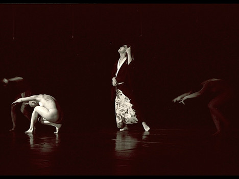 Migration 01 by Tadashi Endo and Mamu Dance Theatre
