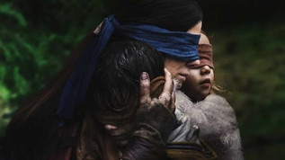 The Bird Box Effect