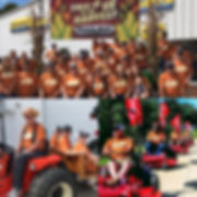 2019 holland fest parade collage.JPG