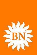 BN Main logo.jpg