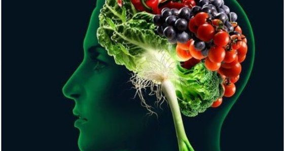 Nutrition for your Brain