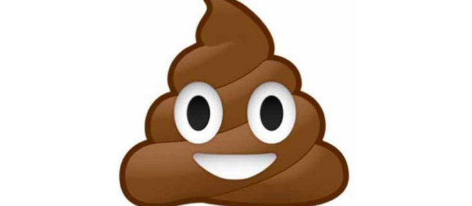 Everything You Want To Know About Poop, But Are Afraid To Ask
