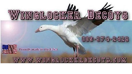 winglocker.jpg