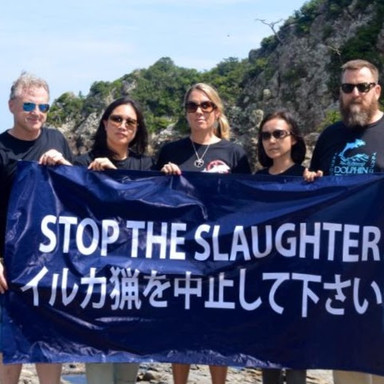 Cove Guardians in Taiji, Japan