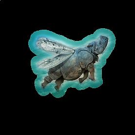 rhino aile.png